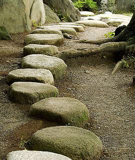 Infertility and Miscarriage . Stepping stones path